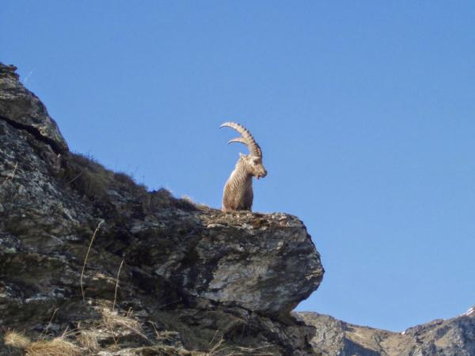 Les Parcs nationaux, découvrez une nature vierge