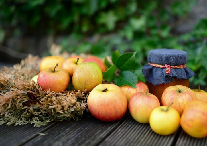Quels sont les fruits de Savoie ?