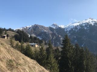 Pourquoi partir à la montagne cet été ?
