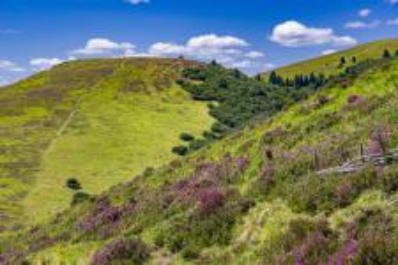 Top 10 des lieux à visiter en montagne