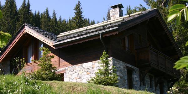 Location au ski Les Chalets De La Tania - La Tania - Extérieur été