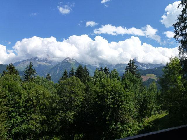 Location au ski Studio mezzanine 6 personnes (17) - Residence Le Taguy - Saint Gervais - Extérieur été