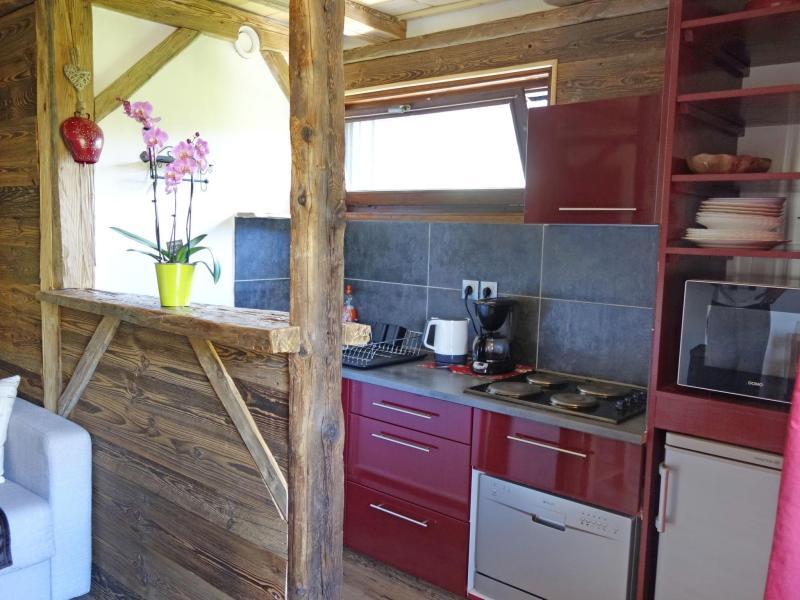Vacaciones en montaña Apartamento 1 piezas para 4 personas (2) - Castel des Roches - Saint Gervais - Cocina abierta