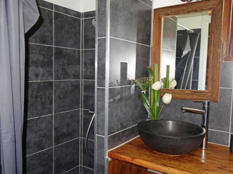 Vacaciones en montaña Apartamento 1 piezas para 4 personas (2) - Castel des Roches - Saint Gervais - Cuarto de baño con ducha