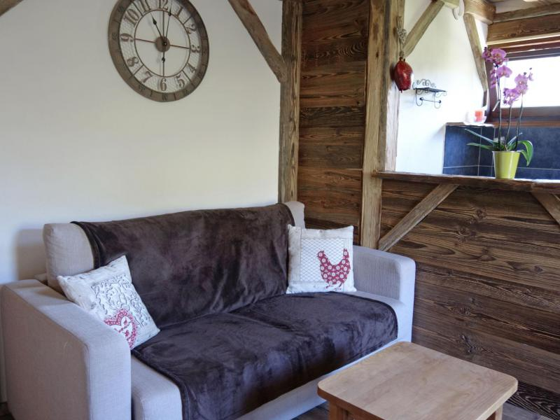 Vacaciones en montaña Apartamento 1 piezas para 4 personas (2) - Castel des Roches - Saint Gervais - Sofá