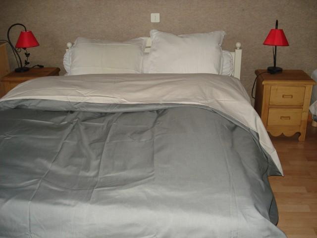 Vacaciones en montaña Apartamento 2 piezas para 5 personas - Chalet Bel Horizon - Châtel - Alojamiento