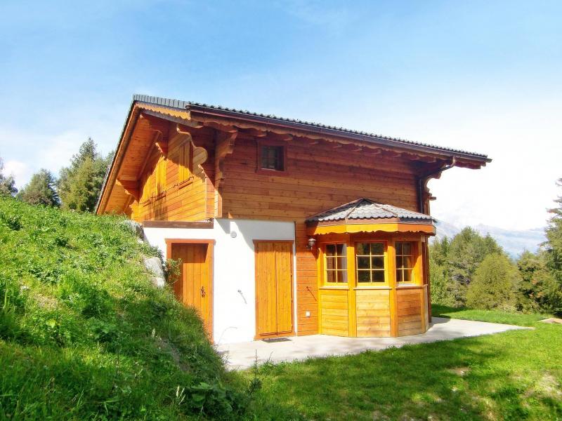 Location au ski Chalet Bellevue - La Tzoumaz - Extérieur été