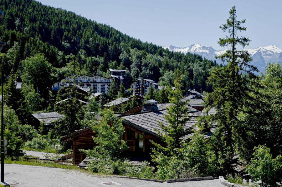 Holiday in mountain resort 3 room duplex chalet 6 people - Chalet Carlina Extension - La Tania