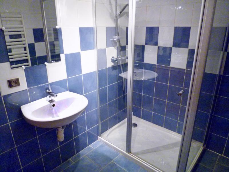 Vacaciones en montaña Chalet Châtel CBN01 - Châtel - Cuarto de baño con ducha