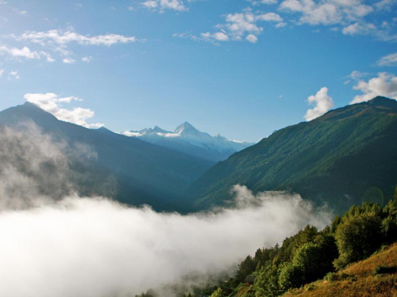 Vacances en montagne Chalet Dargan - Thyon - Extérieur été
