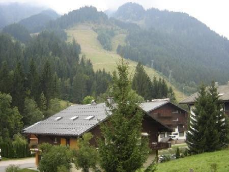 Rent in ski resort 2 room apartment sleeping corner 5 people (12C) - Chalet du Perthuis - Châtel - Summer outside
