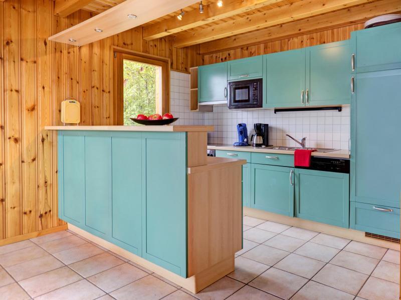 Holiday in mountain resort Chalet Krokus - Thyon - Kitchen