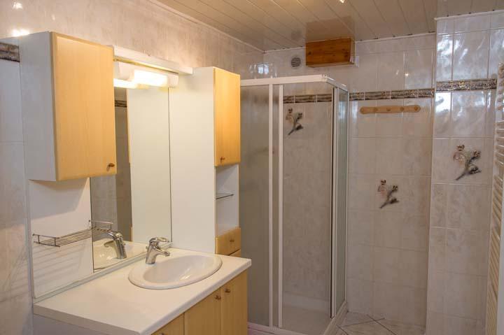 Vacaciones en montaña Apartamento 3 piezas para 6 personas - Chalet le Marmouset - Châtel - Ducha