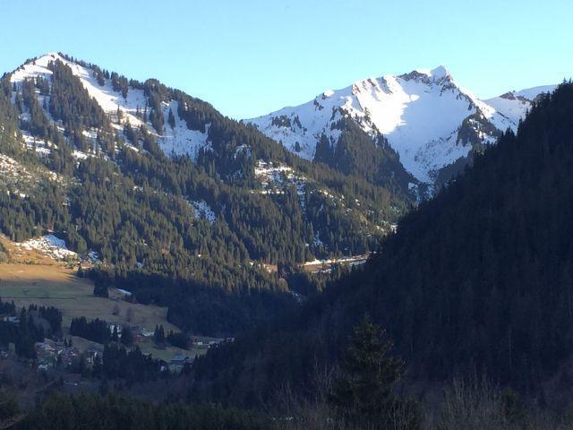 Vacaciones en montaña Estudio -espacio montaña- para 4 personas - Chalet le Tétras Lyre - Châtel - Verano