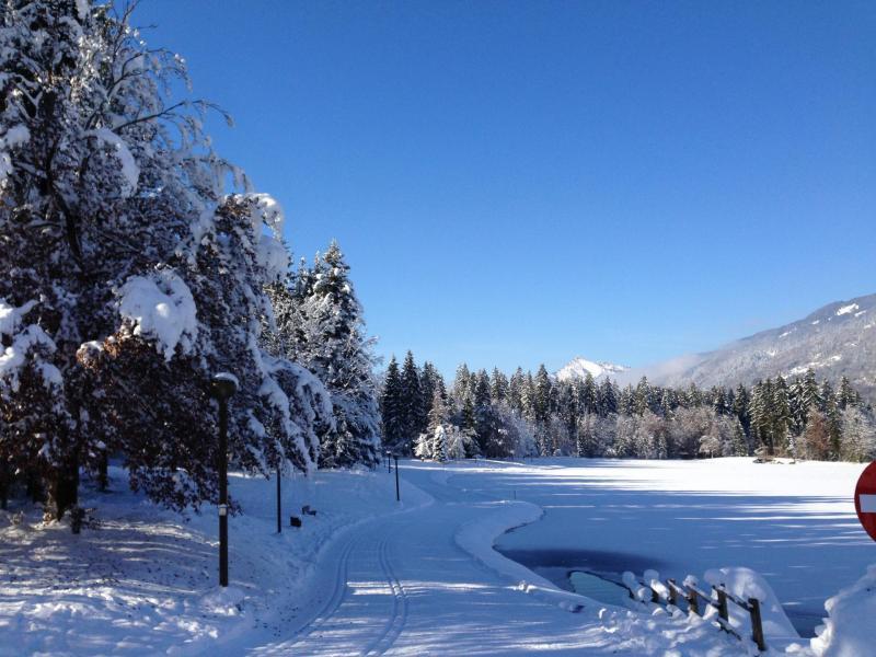 Location au ski Chalet mitoyen 3 pièces 5 personnes (2) - Chalet Les Lys Oranges - Morillon - Extérieur été
