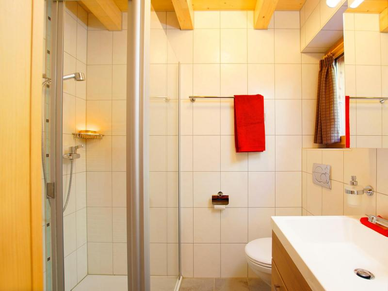 Holiday in mountain resort Chalet Panorama - Thyon - Shower