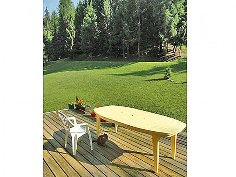 Vakantie in de bergen Chalet Peudral - La Plagne - Buiten zomer