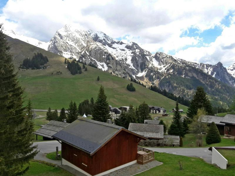 Holiday in mountain resort 1 room apartment 4 people (8) - Combes Blanche 1 & 2 - La Clusaz - Summer outside