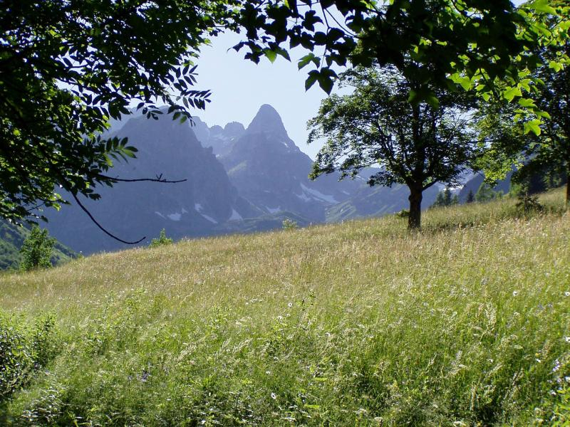 Vacances en montagne Domaine la Perrière - Saint Colomban des Villards - Extérieur été