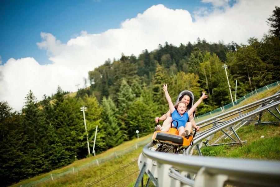 Rent in ski resort Hôtel les Vallées - La Bresse - Summer outside