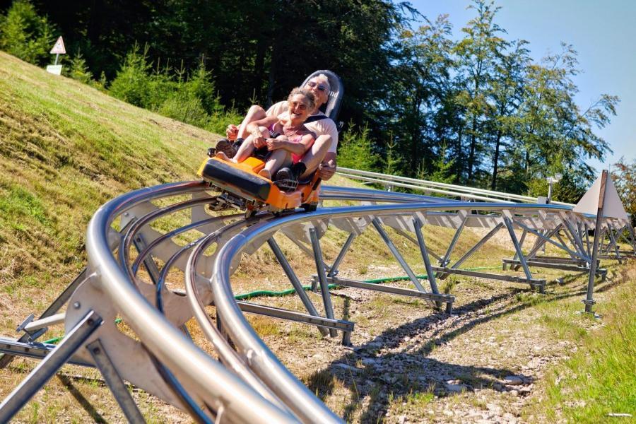 Holiday in mountain resort Hôtel les Vallées - La Bresse - Summer outside