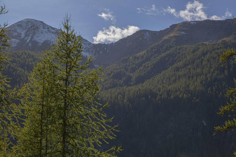 Wakacje w górach Studio z alkową 4 osoby (003) - La Résidence les Flocons - Les Orres