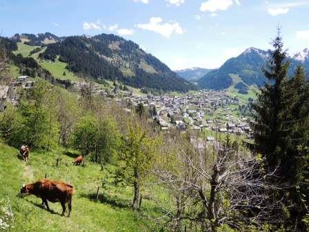 Vacances en montagne Appartement 2 pièces coin montagne 4 personnes (BBB4) - Les Chalets de Barbessine - Châtel