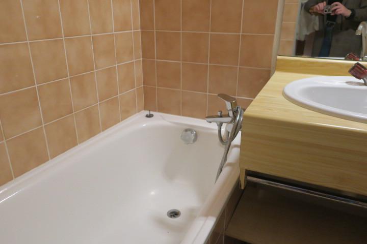 Vacances en montagne Appartement 2 pièces coin montagne 4 personnes (BBB4) - Les Chalets de Barbessine - Châtel - Salle de bains