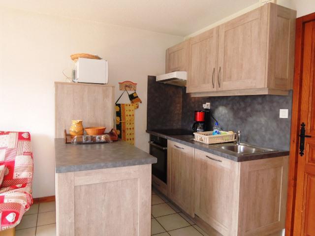 Vacances en montagne Appartement 3 pièces 6 personnes (BBC5) - Les Chalets de Barbessine - Châtel - Kitchenette