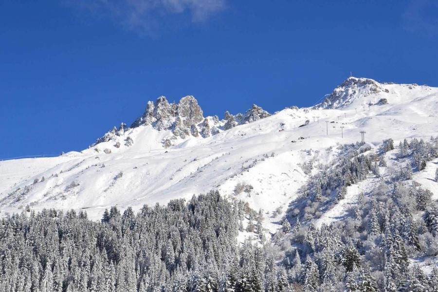 Vacances en montagne Résidence Aiguille du Fruit - Méribel-Mottaret