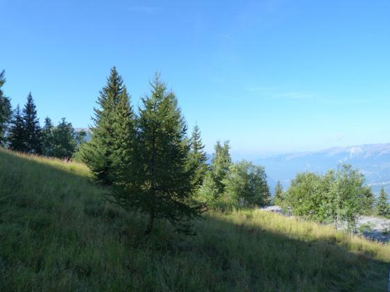Vacances en montagne Studio coin montagne 4 personnes (311) - Résidence Grand Arbois - Les Arcs - Extérieur été