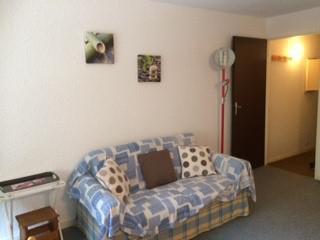 Vacaciones en montaña Apartamento 2 piezas para 6 personas (501) - Résidence Herbouilly - Villard de Lans - Sofá
