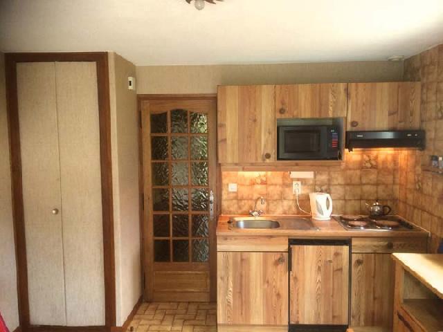 Vacaciones en montaña Apartamento cabina 2 piezas para 5 personas - Résidence l'Orée des Pistes - Châtel - Kitchenette