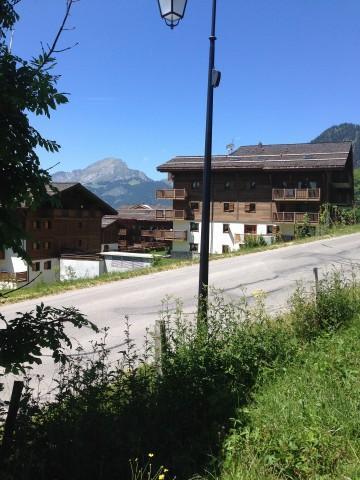 Wakacje w górach Apartament 2 pokojowy z alkową 5 osób (1) - Résidence le Bouquetin - les Jonquilles - Châtel - Na zewnątrz latem