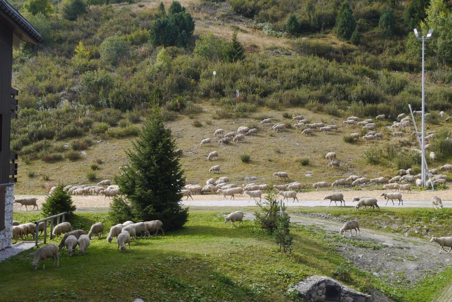 Vacances en montagne Studio 4 personnes (05) - Résidence le Candide - Méribel-Mottaret