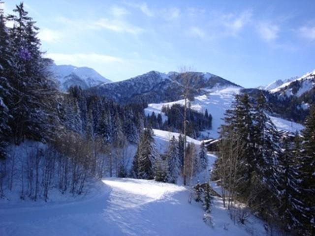 Vacances en montagne Appartement 2 pièces 5 personnes (C63) - Résidence le Cheval Blanc - Valmorel