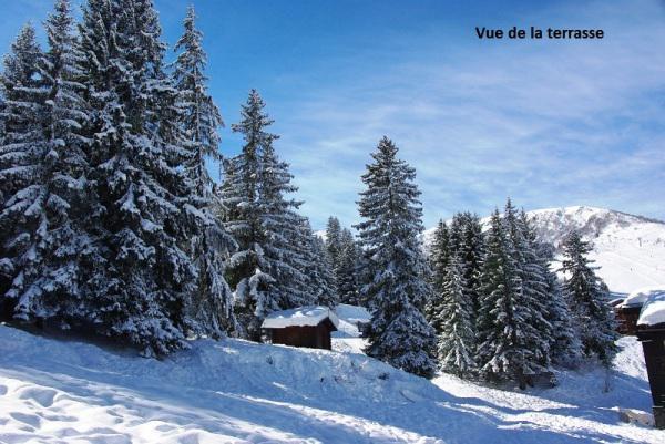 Vacances en montagne Résidence le Cheval Noir - Valmorel