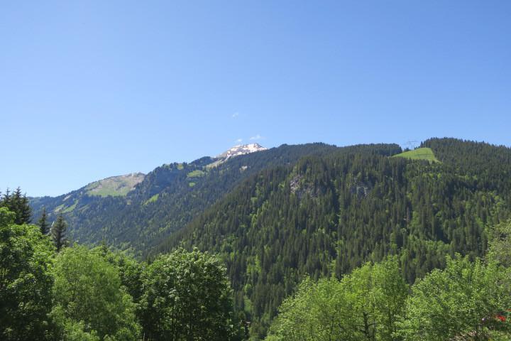 Location au ski Appartement 2 pièces coin montagne 4 personnes (CN13) - Résidence le Corinna - Châtel - Extérieur été