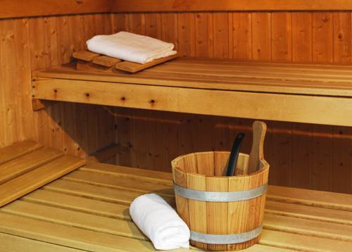Vacances en montagne Residence Le Grand Lodge - Chatel - Sauna