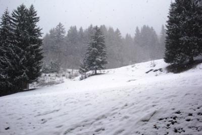 Vacances en montagne Studio 4 personnes (012) - Résidence le Pierrer - Valmorel