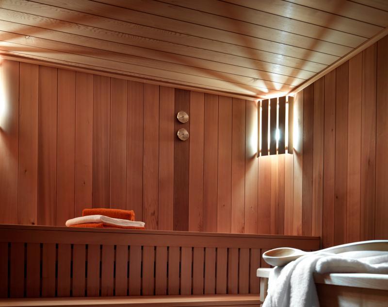Urlaub in den Bergen Résidence les Chalets de Layssia - Samoëns - Sauna