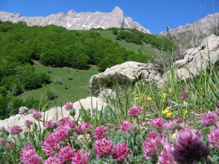 Vacaciones en montaña Apartamento 2 piezas para 5 personas (IS0618X) - Résidence les Issarts  - Superdévoluy - Verano