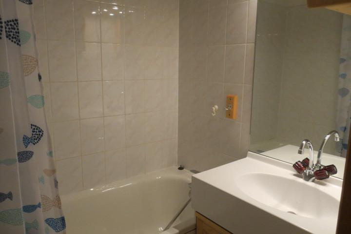Vakantie in de bergen Appartement 3 kamers 6 personen (17) - Résidence les Myrtilles - Châtel