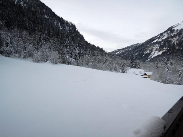 Vacances en montagne Appartement 3 pièces 5 personnes (18) - Résidence les Myrtilles - Châtel