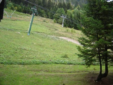 Rent in ski resort Logement 5 personnes - Résidence les Rhododendrons - Châtel - Summer outside