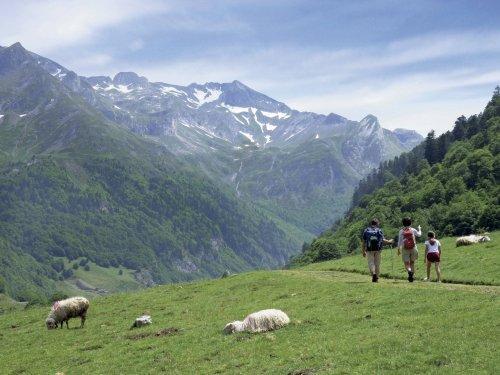 Location au ski Résidence Maeva Bellecôte - La Plagne - Extérieur été