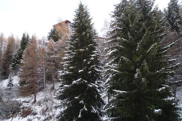 Vacances en montagne Studio 2 personnes (707) - Résidence Nova - Les Arcs