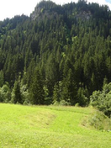 Vacaciones en montaña Apartamento cabina 2 piezas para 4 personas (PNG009D) - Résidence Perce Neige - Châtel - Verano