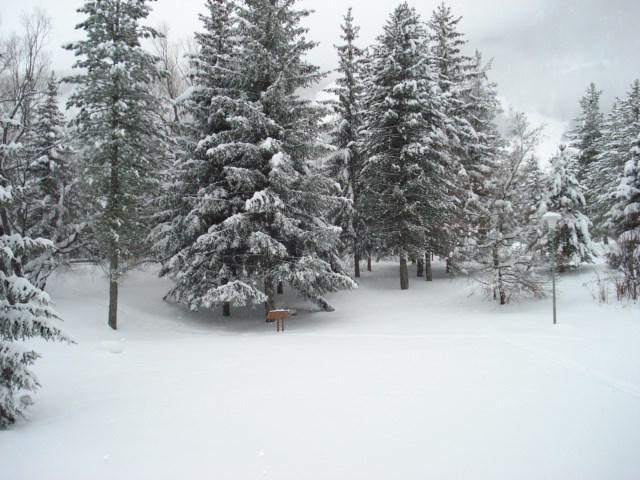 Vacanze in montagna Résidence Plaine Alpe - Serre Chevalier