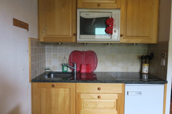 Wakacje w górach Apartament 3 pokojowy 6 osób (B16) - Résidence Sabaudia - Châtel - Aneks kuchenny